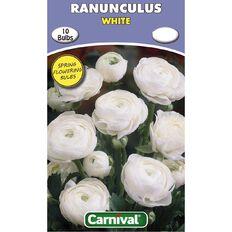 Carnival Ranunculus Bulb White 10 Pack