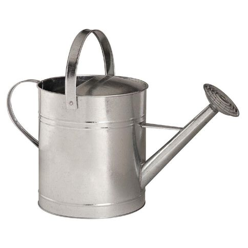 Galvanized Watering Can with Movable Top Handle 10L