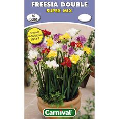 Carnival Freesia Double Bulb Super Mix 30 Pack