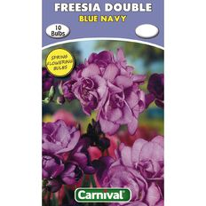 Carnival Freesia Double Bulb Blue Navy 10 Pack