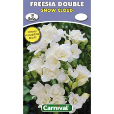 Carnival Freesia Double Bulb Snow Cloud 10 Pack