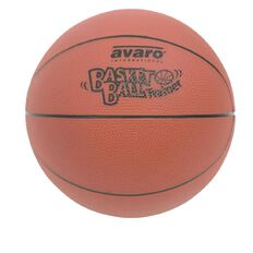 Avaro Basketball Ball Trainer
