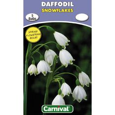 Carnival Daffodil Bulb Snow Flakes 5 Pack