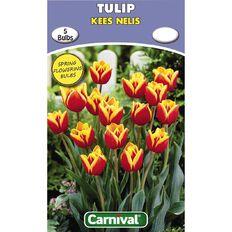 Carnival Tulip Bulb Kees Nelis 5 Pack
