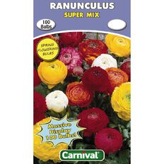 Carnival Ranunculus Bulb Super Mix 100 Pack