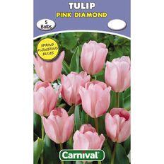 Carnival Tulip Bulb Pink Diamond 5 Pack
