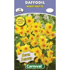 Carnival Scented Daffodil Bulb Martinette 10 Pack