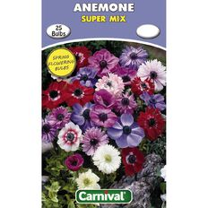 Carnival Anemone Bulb Super Mix 25 Pack